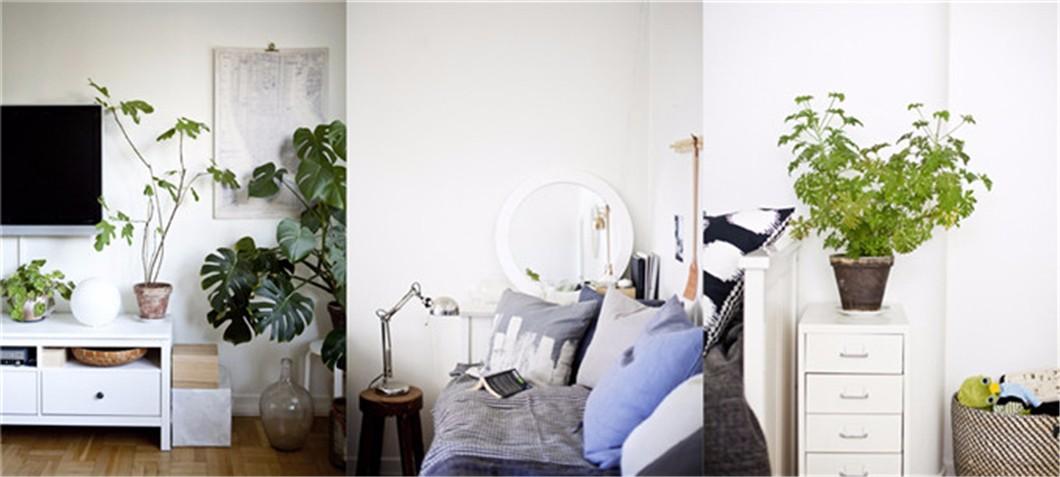家装参观:姐弟俩的小空间家庭公寓
