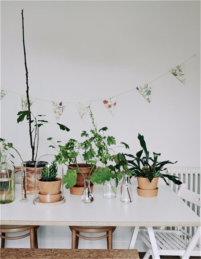 家装参观:把自然气息带回家